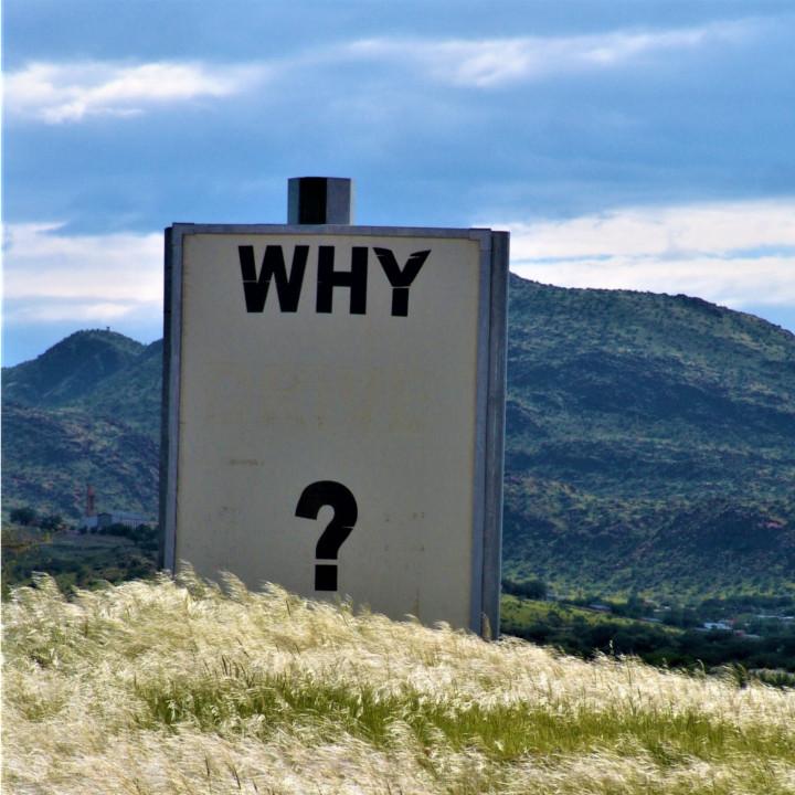 こちらからの質問